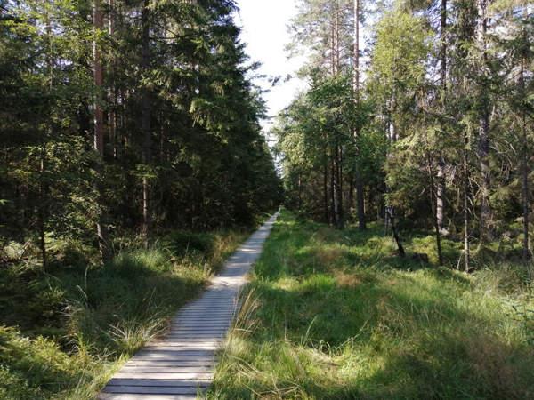 Národní přírodní rezervace Dářko